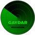 Diss 'n' Gauges - Gaydar